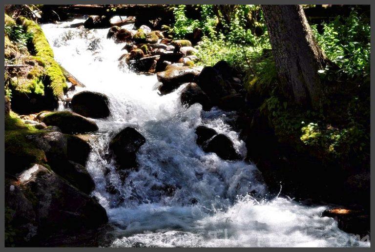 Leelanau Trails › Wild Cherry Resort › RV Resort and