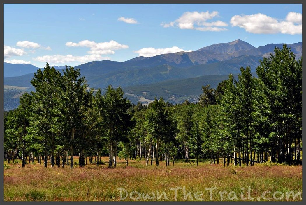 salida single men Find homes for sale and real estate in salida, co at realtorcom® search and filter salida homes by price, beds, baths and property type.