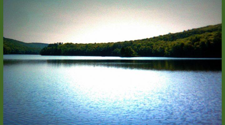 Eyes at Goose Pond
