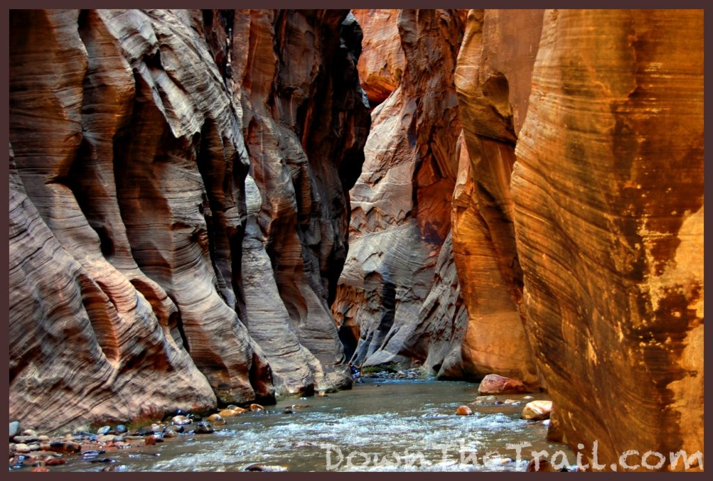 Wall Street in the Zion Narrows
